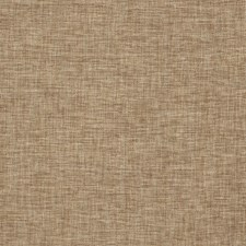 Acorn Solid Drapery and Upholstery Fabric by Fabricut