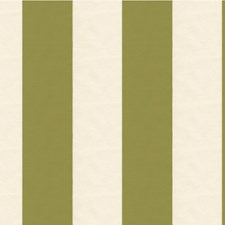 White/Green/Sage Stripes Drapery and Upholstery Fabric by Kravet