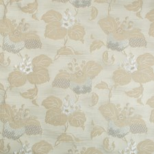 Greystone Botanical Drapery and Upholstery Fabric by Kravet