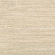 Beige/Grey/Ivory Texture Drapery and Upholstery Fabric by Kravet