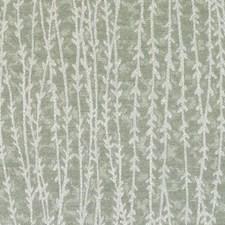 353614 BU16152 257 Moss by Robert Allen