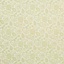 Lemongrass Crypton Drapery and Upholstery Fabric by Kravet