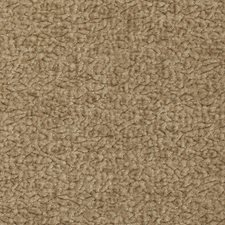 Champagne Solid Drapery and Upholstery Fabric by Kravet