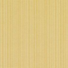 360809 DK61158 65 Maize by Robert Allen