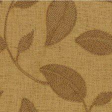 Beige Botanical Drapery and Upholstery Fabric by Kravet