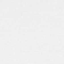 361563 DK61161 673 Winter Whit by Robert Allen