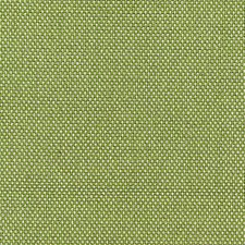 Absinthe Drapery and Upholstery Fabric by Scalamandre