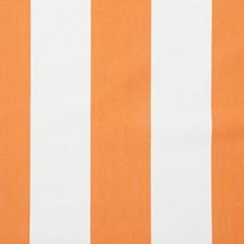 365723 65004LD 6 Tangerine by Robert Allen