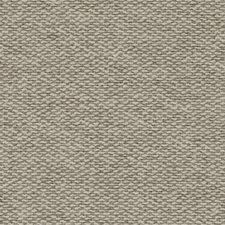 370277 DW61176 152 Wheat by Robert Allen