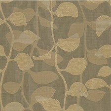 Beige/Grey Botanical Drapery and Upholstery Fabric by Kravet