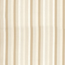 Ivory Stripes Drapery and Upholstery Fabric by Fabricut