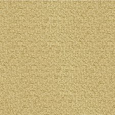 Prosecco Solids Drapery and Upholstery Fabric by Kravet