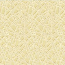 Shell Modern Drapery and Upholstery Fabric by Kravet