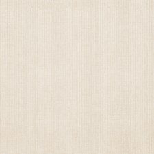 Cream Texture Plain Drapery and Upholstery Fabric by Trend