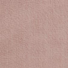 Petal Texture Plain Drapery and Upholstery Fabric by Trend