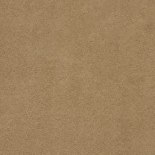 Chino Solid Drapery and Upholstery Fabric by Trend