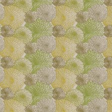 Lime Embroidery Drapery and Upholstery Fabric by S. Harris