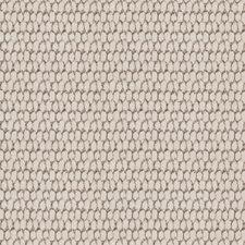 Oreo Animal Drapery and Upholstery Fabric by Fabricut