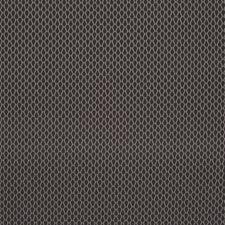 509682 HU16237 79 Charcoal by Robert Allen