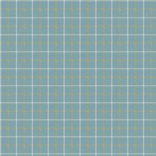 Island Check Drapery and Upholstery Fabric by Fabricut