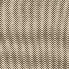 511490 SU16323 177 Chestnut by Robert Allen
