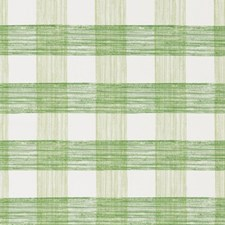 Celery Drapery and Upholstery Fabric by Robert Allen /Duralee