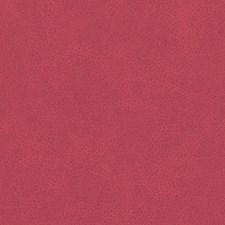 518753 DF16285 224 Berry by Robert Allen