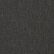 Licorice Solid Drapery and Upholstery Fabric by Trend