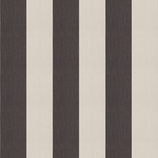 Black Stripes Drapery and Upholstery Fabric by Trend