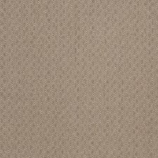 Earth Small Scale Woven Drapery and Upholstery Fabric by Trend