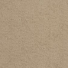 Sand Animal Drapery and Upholstery Fabric by Fabricut
