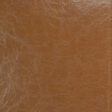 Sequoia Solid Drapery and Upholstery Fabric by Fabricut