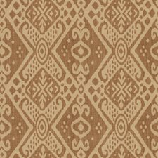 Terroire Global Drapery and Upholstery Fabric by Vervain