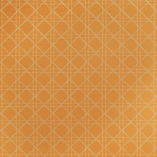 Pumpkin Embroidery Drapery and Upholstery Fabric by Stroheim