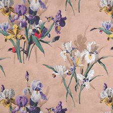 Cipria Drapery and Upholstery Fabric by Clarence House