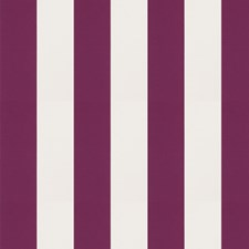 Azalea Stripes Drapery and Upholstery Fabric by Trend