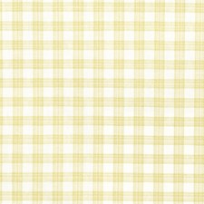 Pear Check Drapery and Upholstery Fabric by Trend