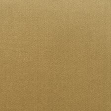 Antelope Solid Drapery and Upholstery Fabric by Trend