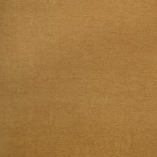 Mayan Solid Drapery and Upholstery Fabric by Trend