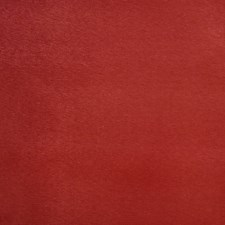 Paprika Solid Drapery and Upholstery Fabric by Trend