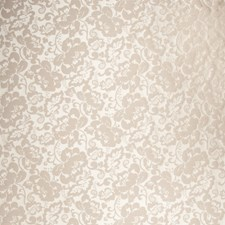 Latte Floral Drapery and Upholstery Fabric by Trend