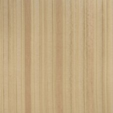 Amber Stripes Drapery and Upholstery Fabric by Trend