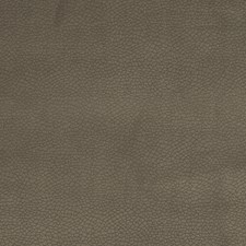 Fossil Animal Drapery and Upholstery Fabric by Trend