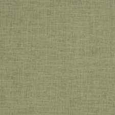Eucalyptus Solid Drapery and Upholstery Fabric by Trend