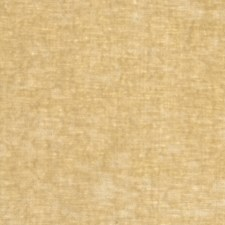 Champagne Solid Drapery and Upholstery Fabric by Stroheim
