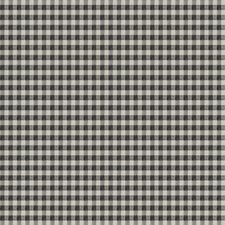 Thunder Check Drapery and Upholstery Fabric by Trend