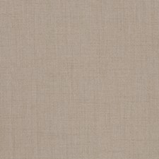 Sesame Solid Drapery and Upholstery Fabric by Trend