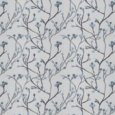 Bluebird Embroidery Drapery and Upholstery Fabric by Fabricut
