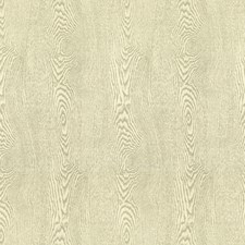 Birch Texture Drapery and Upholstery Fabric by Brunschwig & Fils