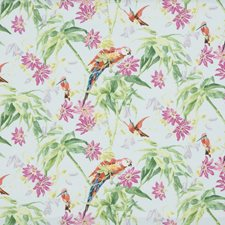 Pink/Sky Tropical Drapery and Upholstery Fabric by Brunschwig & Fils